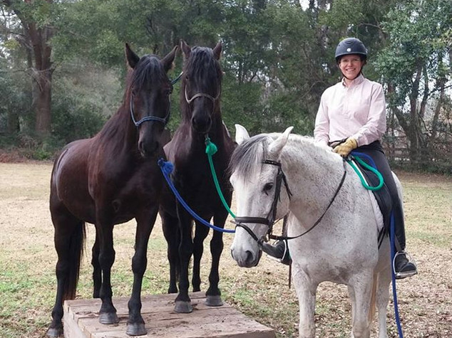 Horse Training: $50-55 ($40 in boarding Package)