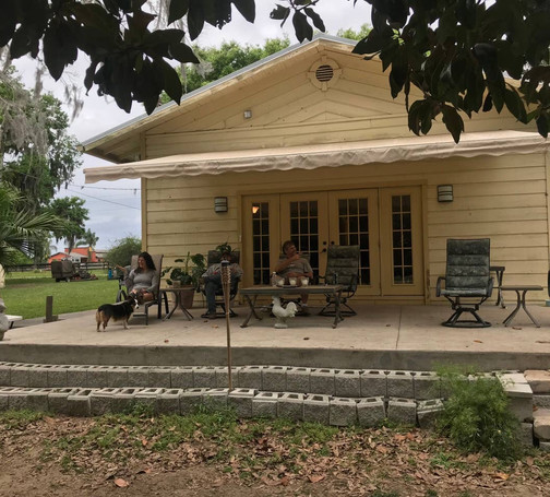 Large deck with plenty of seating, awning, and horses to watch 30 feet away in the pasture