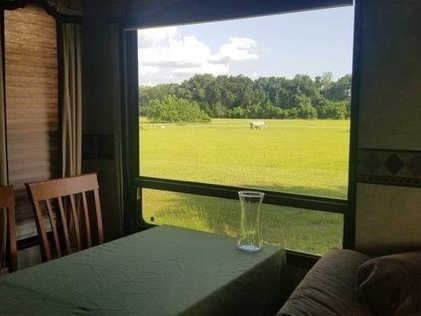 with pasture views from large windows
