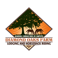 diamond oaks farm lodging and horseback riding ocala florida ranch getaway