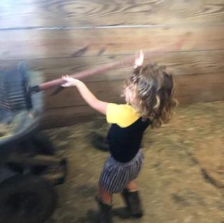 Hands-on Horse Care Workshop