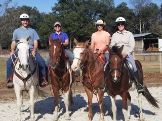 Horseback riding: your private group of 1-6