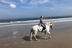 Ocean horseback riding at Diamond Oaks Ranch Hotel