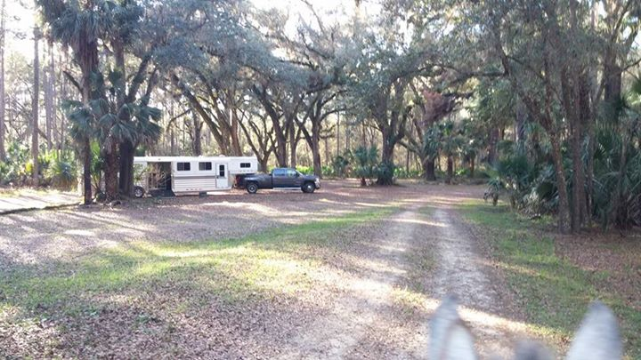 Beautiful park, love the oaks& pines