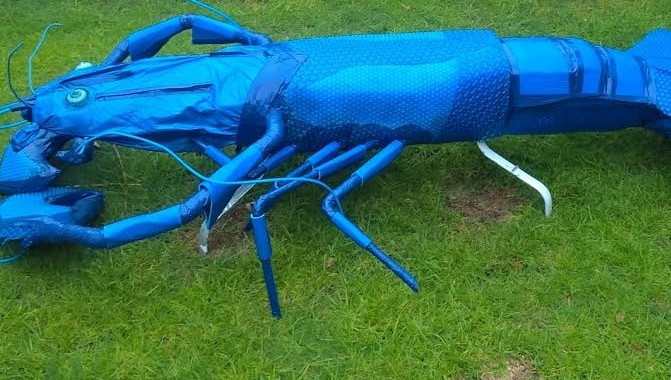 Marvin, King of the Blue Marron