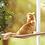 Thumbnail: Cama Rede de Janela para Gatos - Plataforma Suspensa