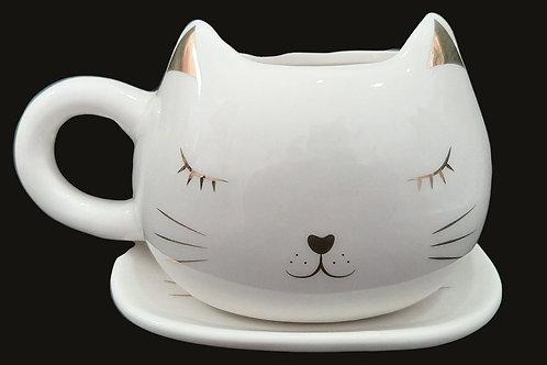 Kit Gato Dourado