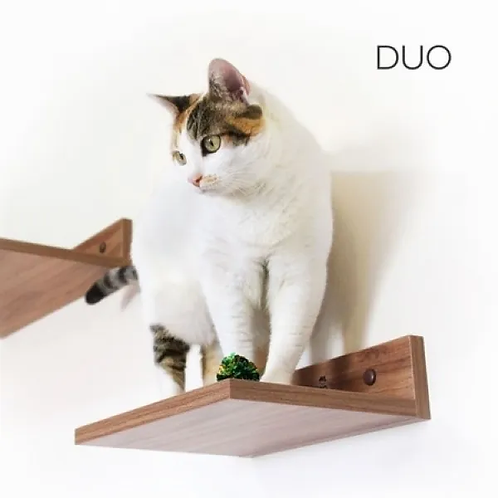 Duo De Prateleiras Home Cat - Para Gatos