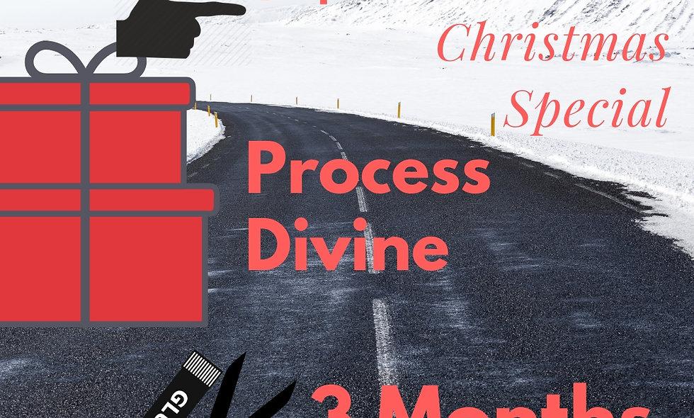 3 Months of Process Divine