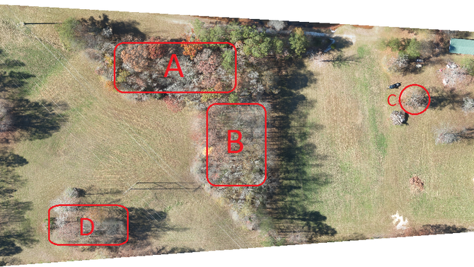 Efficacy of DEM creation using Photogrammetry when encountering tree canopy