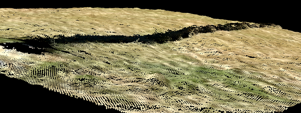 Image 3 - Point Cloud Low Angle