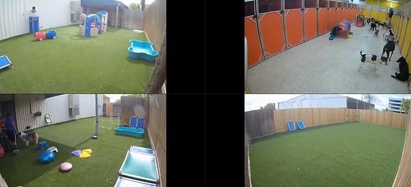 Screen Shot 2021-06-10 at 2.10.09 PM.png