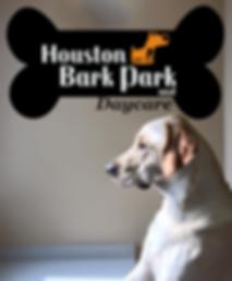 dog daycare houston boarding