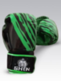 Boxing Gloves Black and Green_edited_edited.jpg