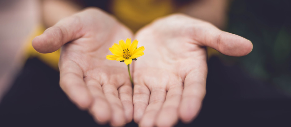 What Can I do to Forgive?