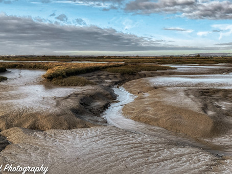 The Coastal Marshes of Medway and North Kent