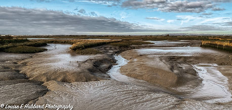 Mudflats of Cliffe Marshes