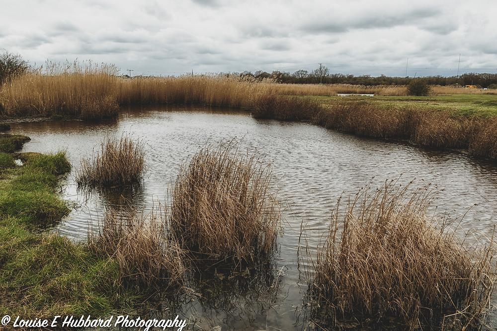 Dyke at Hoo Marshes