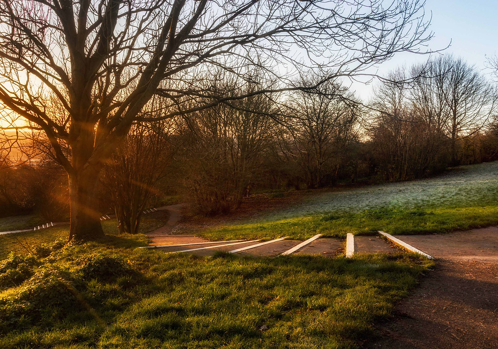 Early Morning Sun at Broom Hill Park, Strood