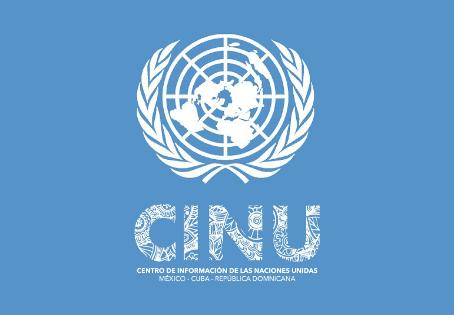 ¿Quieres ser Practicante o hacer Servicio Social en las Naciones Unidas en 2019? 😯