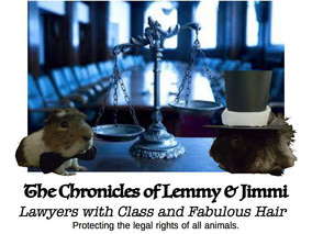 The Chronicles of Lemmy & Jimmi - Episode 2: Hard Learnt Lessons