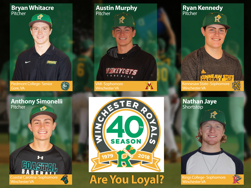Winchester Royals local players to join the team for our 40th season.