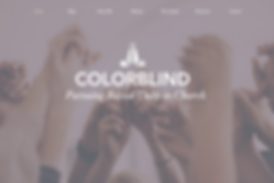 colorblind-page.png