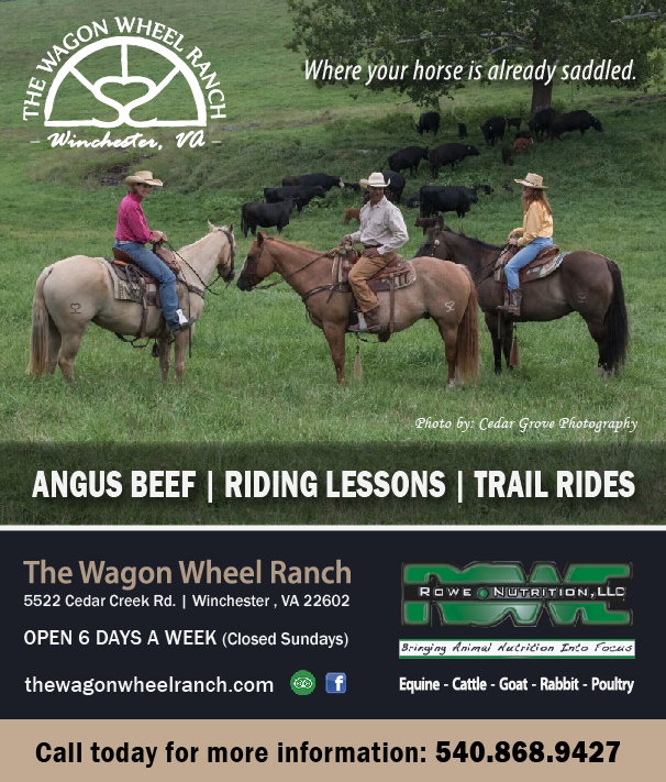 The Wagon Wheel Ranch