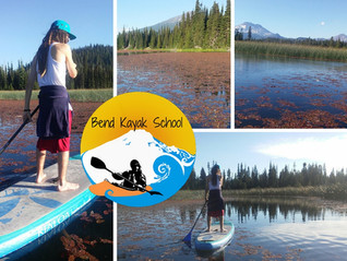 Evening Kayak and Paddle Board Rentals in Bend: Paddling Hosmer Lake after Work