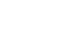 Salt_City_Logo_White-04.png