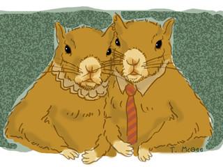 The Semi-Intelligent Squirrels of Pluton Six