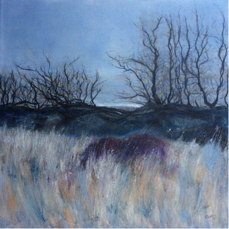 Winter Trees - NFS