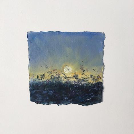 Porthowan Hedgegrow - SOLD