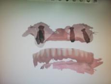 3D Tarama (25).jpeg