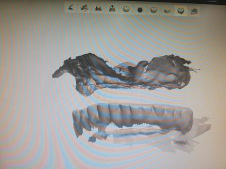 3D Tarama (4).jpeg