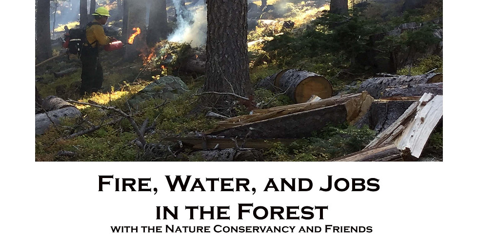 Fire, Water and Jobs in the Forest