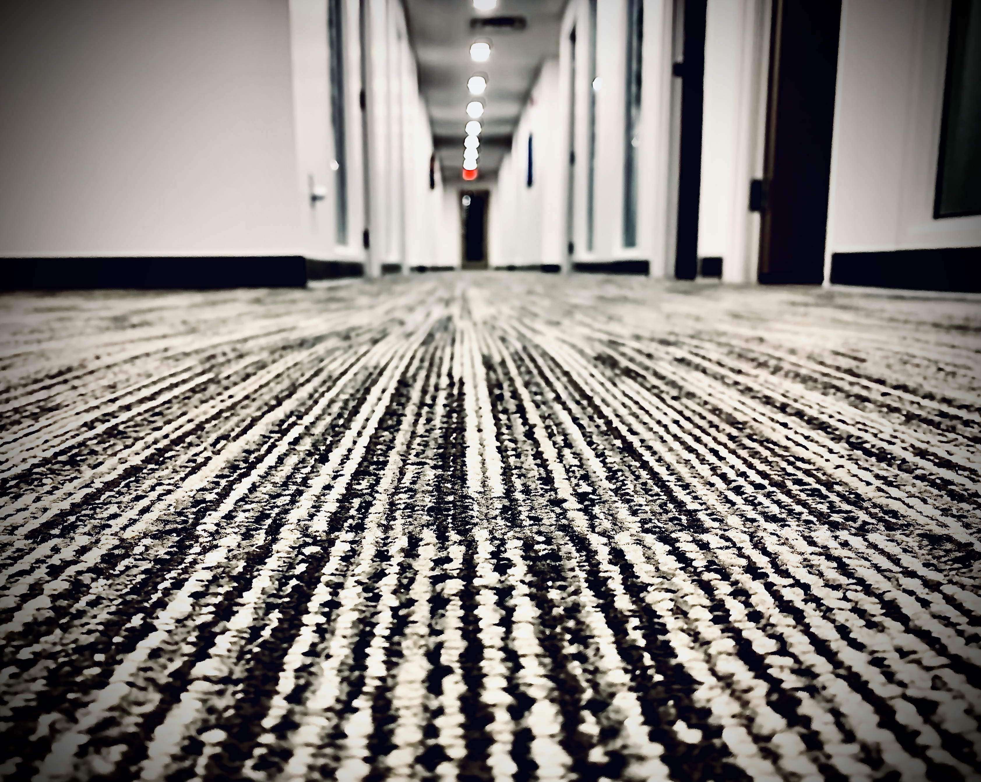 Floor and carpet cleaning