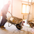 Construction Clean-Up Quote