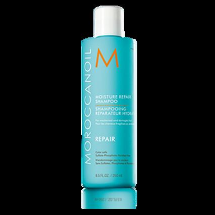 Moroccan Oil Moisture Repair Shampoo