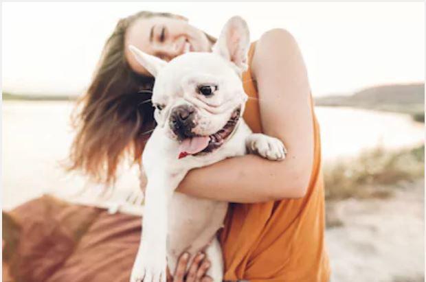 Rozhovor o ochrane vášho psíka