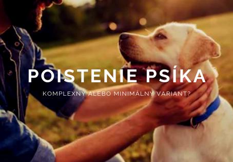 Ako nastaviť poistenie psíka? Komplexný alebo minimálny variant?