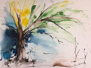 Wild Tree III.JPG
