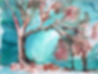 Wild Tree - Anglesea.jpg