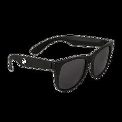 ISU Sunglasses Black.png