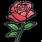 rosa-sant-jordi-png-4.png