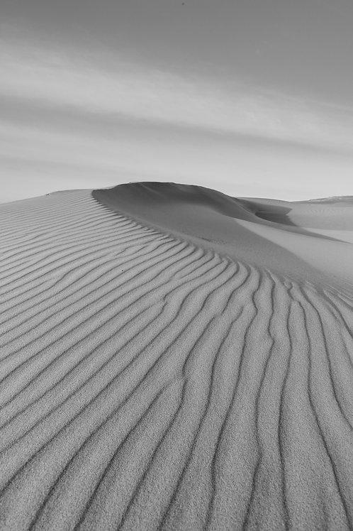 dune, stockton, stockton sand dunes, worimi, birubi