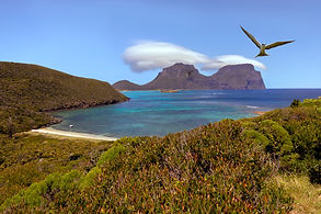 view from Mt Eliza, Lord Howe Island jpe