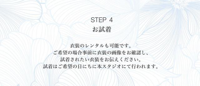 step4.jpg