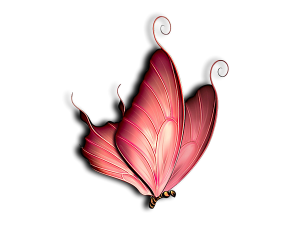 butterfly.001.png
