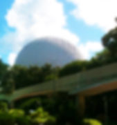 Epcot for site.jpg